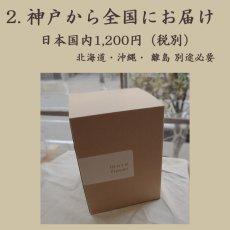 画像6: プリザーブドフラワー | 大輪のバラが印象的な贅沢なアレンジM【ガラスドーム】 (6)