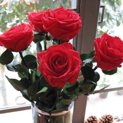 画像2: プリザーブドフラワー | BOX入り シンプルなバラの花(葉も茎もプリザービング加工)