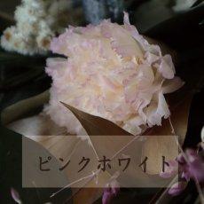 かわいいピンクホワイト